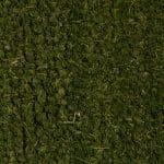 Zerbino in Cocco Naturale - Colore: Verde